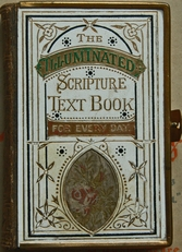The illuminated Scripture Text Book.