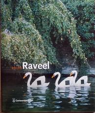 Roger Raveel.